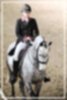 Photographe Équestre
