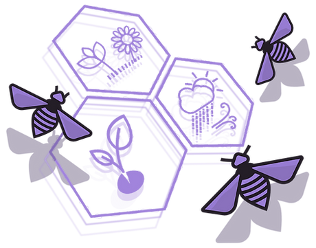 abejas-panal_edited_edited_edited.png