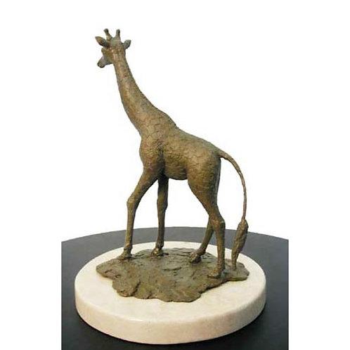 Reflective Giraffe