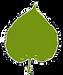 Lindenblatt-gr%C3%BCn_edited.png