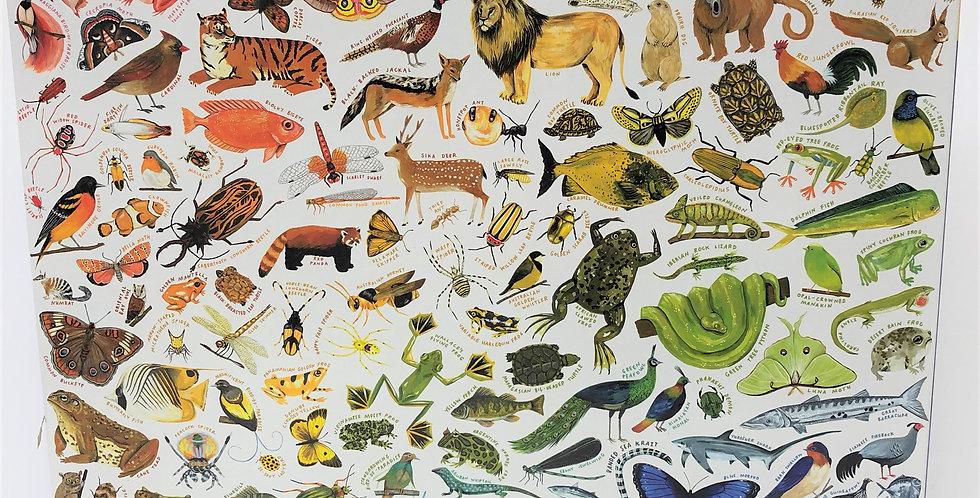 Eeboo 1000 piece puzzle A Rainbow World