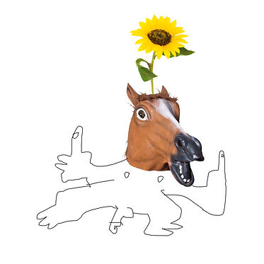 new horse.jpg