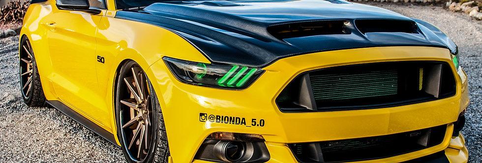 2015 - 2017 Mustang Carbon Fiber S1 Hood