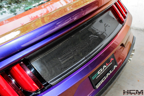 Terminator Cobra Radiator Cover