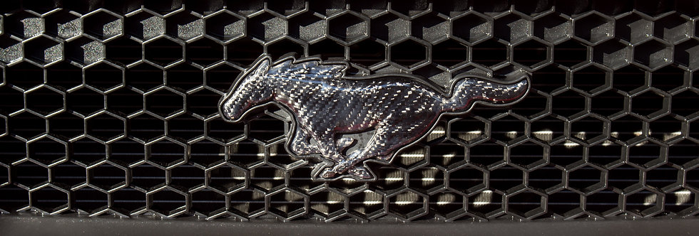2015 - 2019 Mustang Carbon Fiber Front Grille Pony