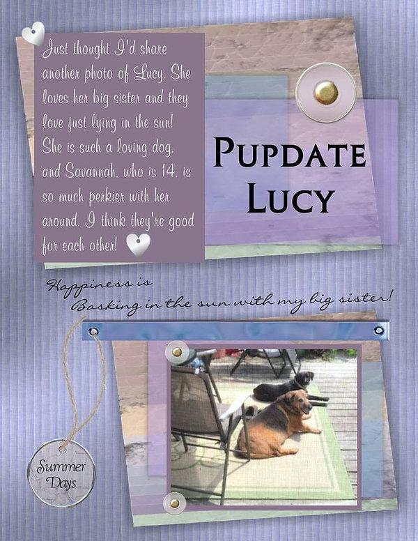 LucyPupdate_edited.jpg