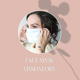 face mask .png