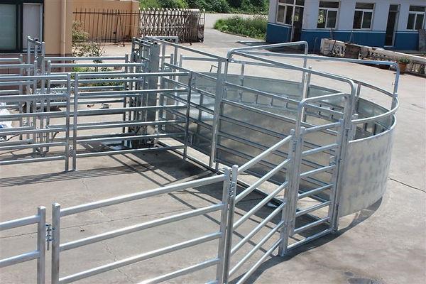 Senturion Steel Supplies Cattle Force Ya