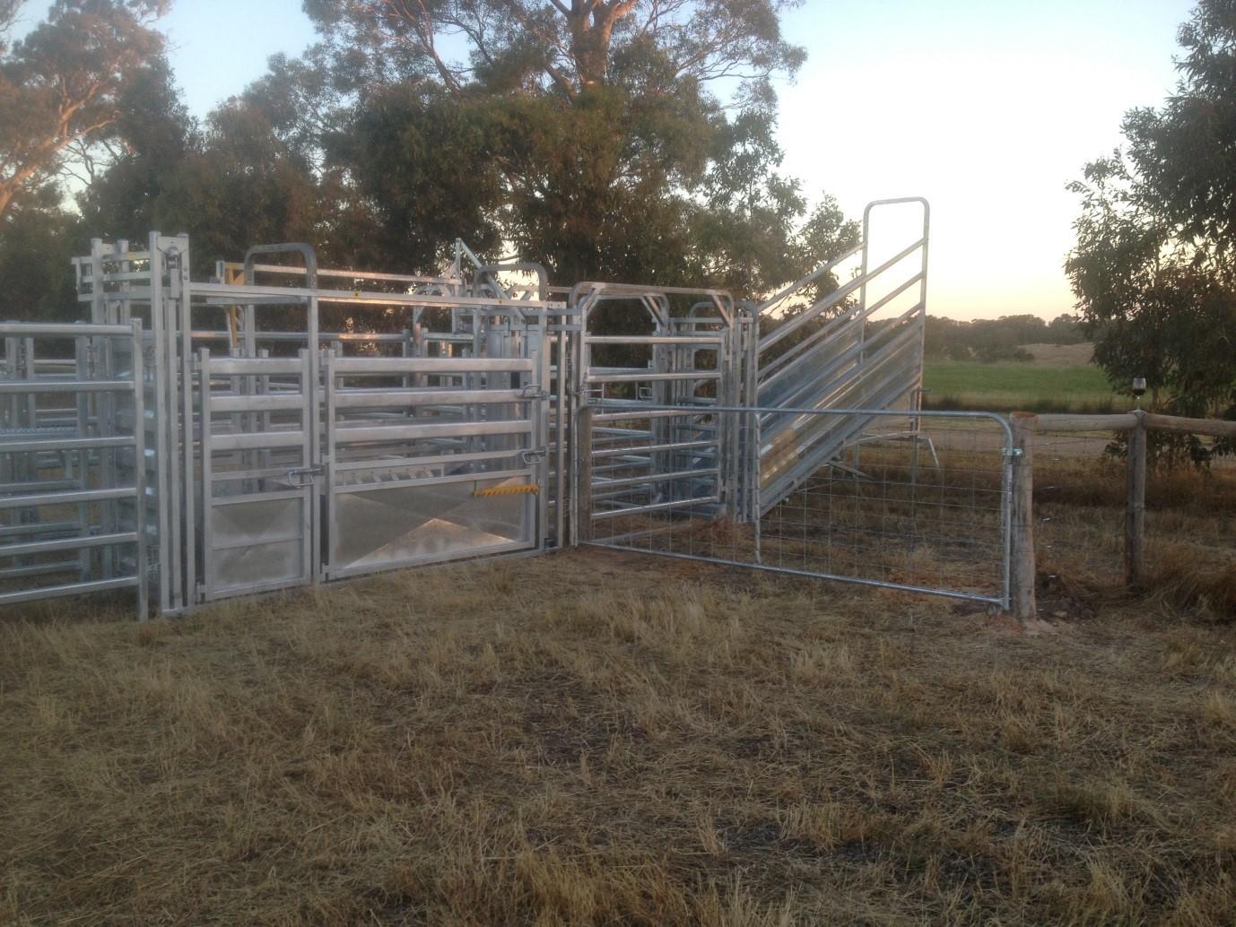 Senturion-Steel-Supplies-Adams-Crossing-Cattle -Yards-02