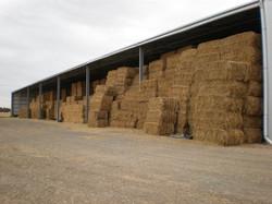Senturion-Steel-Supplies-Sheds-Rural-26