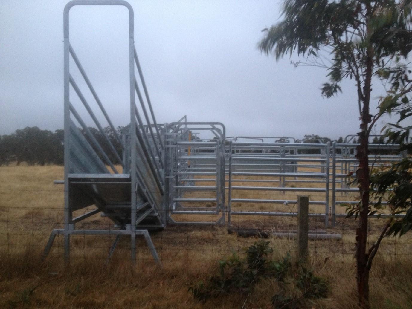 Senturion-Steel-Supplies-Adams-Crossing-Cattle-Yards-06