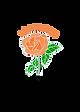 rose01.png