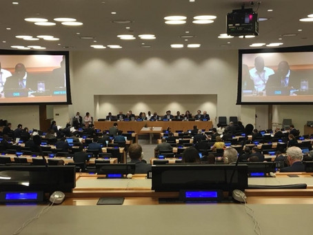 Committee of 24: Participants call to speed up Western Sahara decolonization