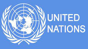 British NGO criticizes UN failure in Western Sahara