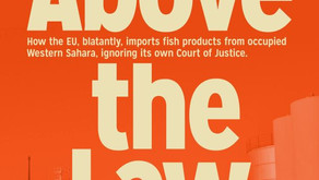 New report: The EU ignores its own court on conflict trade