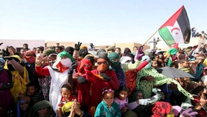 Settlement of Western Sahara conflict: Two conflicting parties resume talks Wednesday in Geneva
