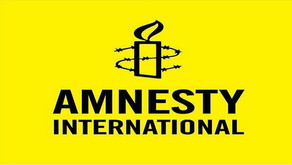 Amnesty calls for endowing MINURSO with human rights monitoring mechanism