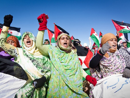 World March of Women expresses solidarity with Sahrawi people