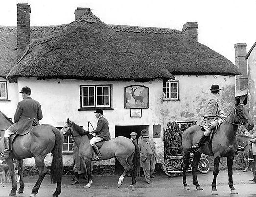 Tiverton_Foxhounds_Stag_Inn_1954-L.jpg