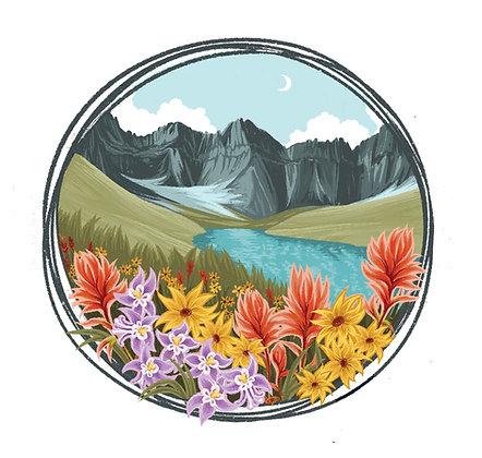 Cracker Wildflowers
