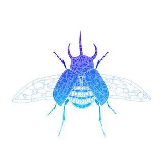 Geometric Beetle