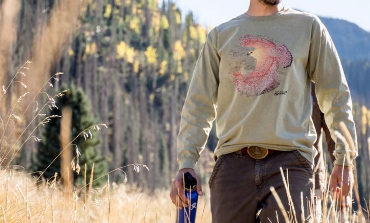Soaring Hawk Shirt Design