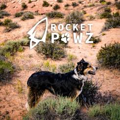 Rocket Pawz Logo