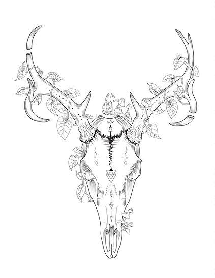 Deer Skull Coloring Page.jpg