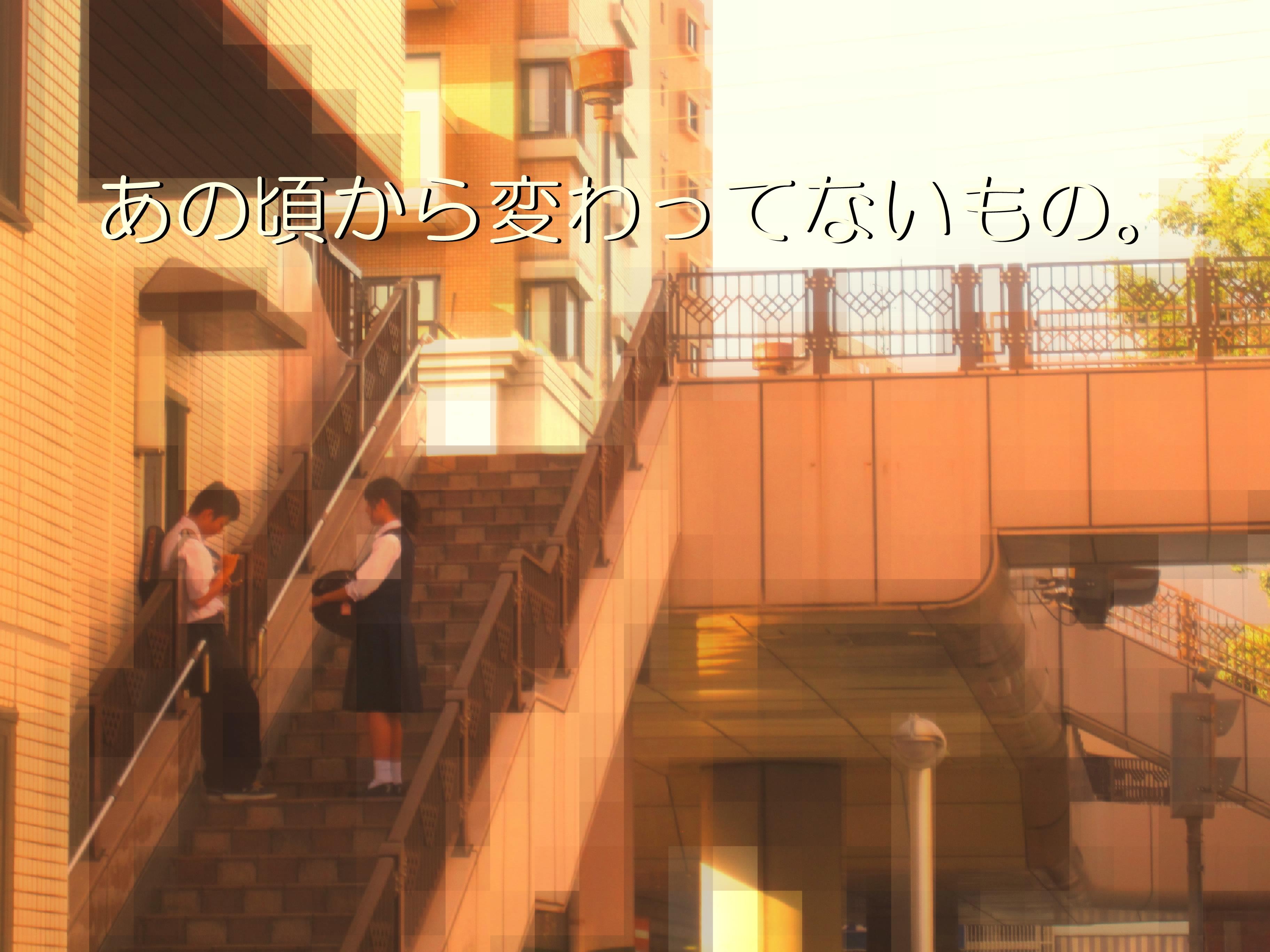 コピー (1) ~ IMG_7641
