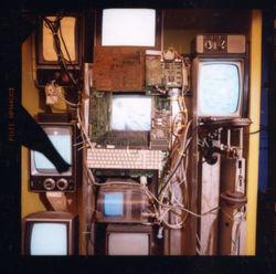 The Brain (Detail) 2000