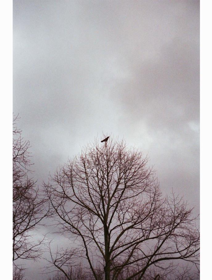 © Elise Toïdé