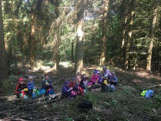 Waldtage im Kindergarten Wirbelwind