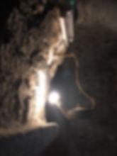 ST-MOSS LAMPE.JPG