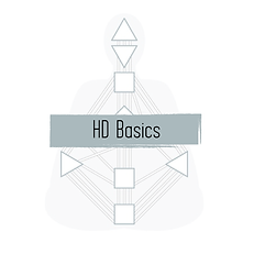Human Design Basics Reading