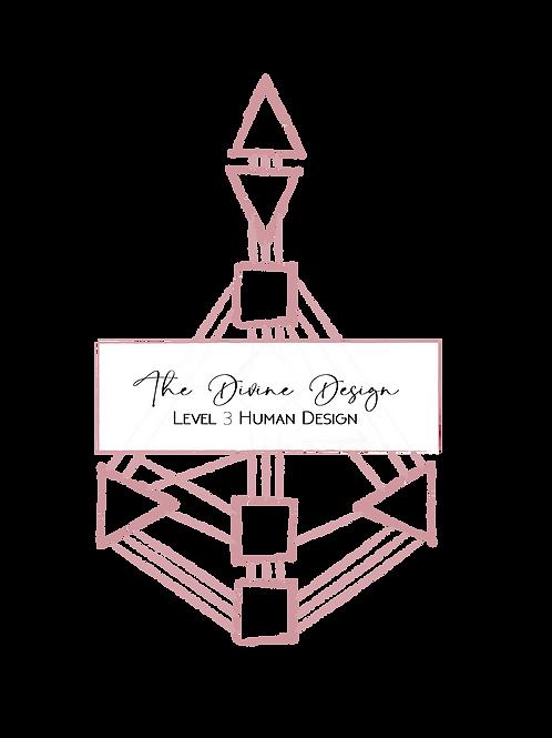 The Divine Design - Level 3 Reading