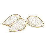 minerals - almonds.png