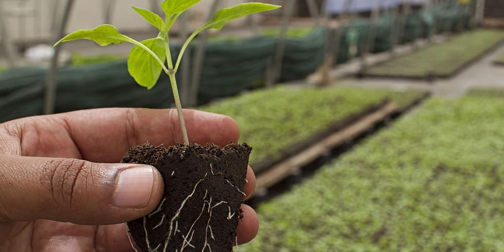 Eco Nutri Farm Workshop