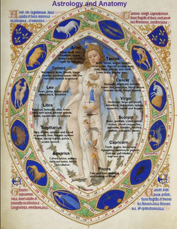 Astrology and Anatomy
