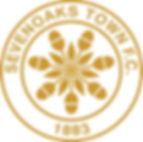 STFC logo gold.jpg
