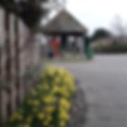 Village Pump Spring 2019.jpg