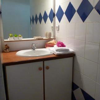 1ère salle d'eau + wc