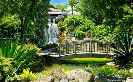 Anoli Location_Jardin Botanique Guadelou
