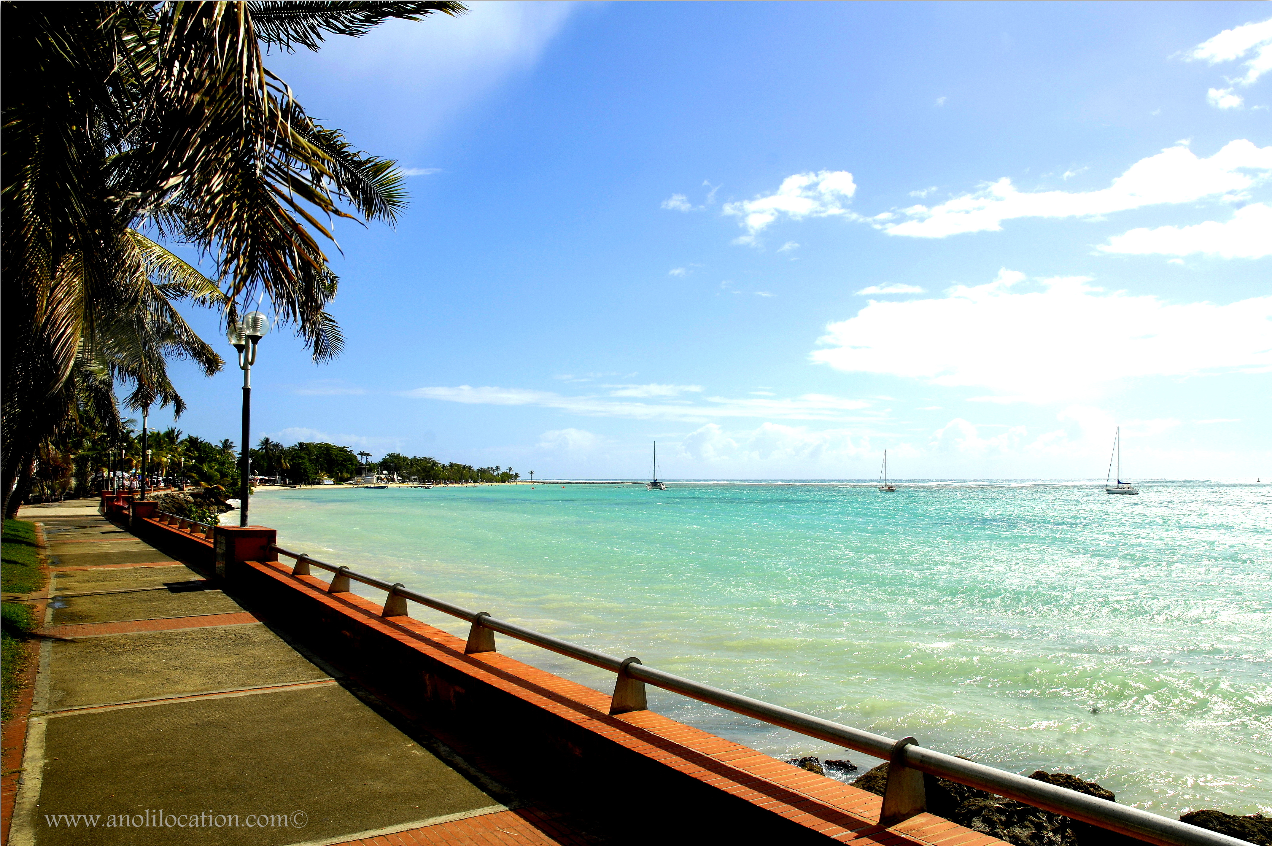 Anoli Location_Baie de Sainte Anne_Guadeloupe