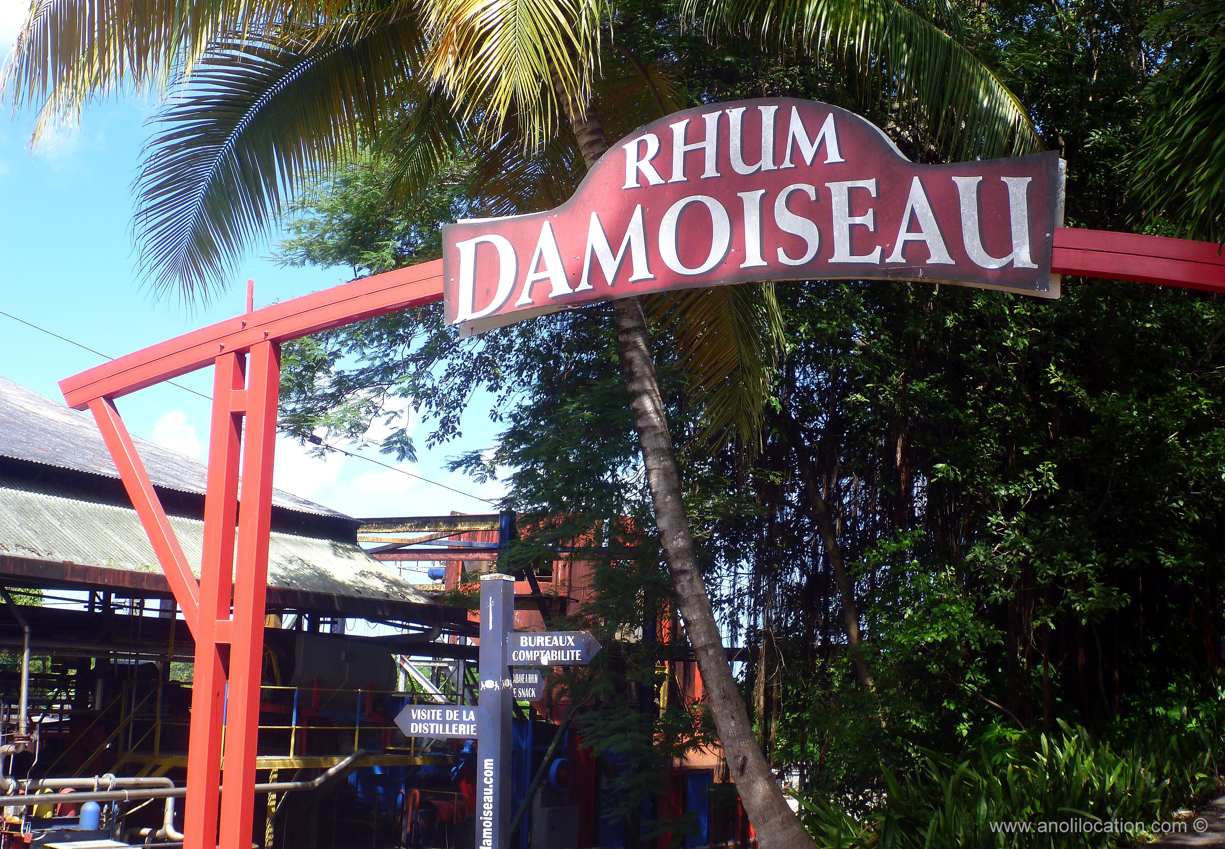 Anoli Location_Rhumerie Damoiseau Guadeloupe