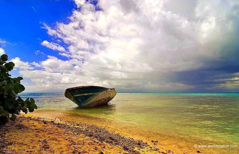 Anoli Location_Ilet Gosier_Guadeloupe