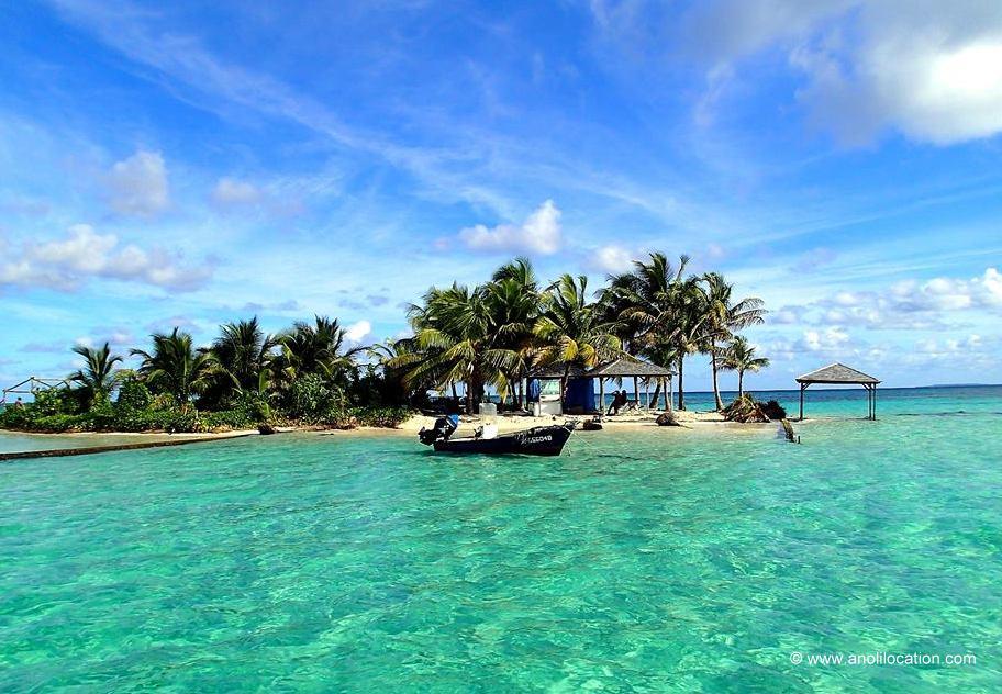 Anoli Location_Ilet Caret_Guadeloupe