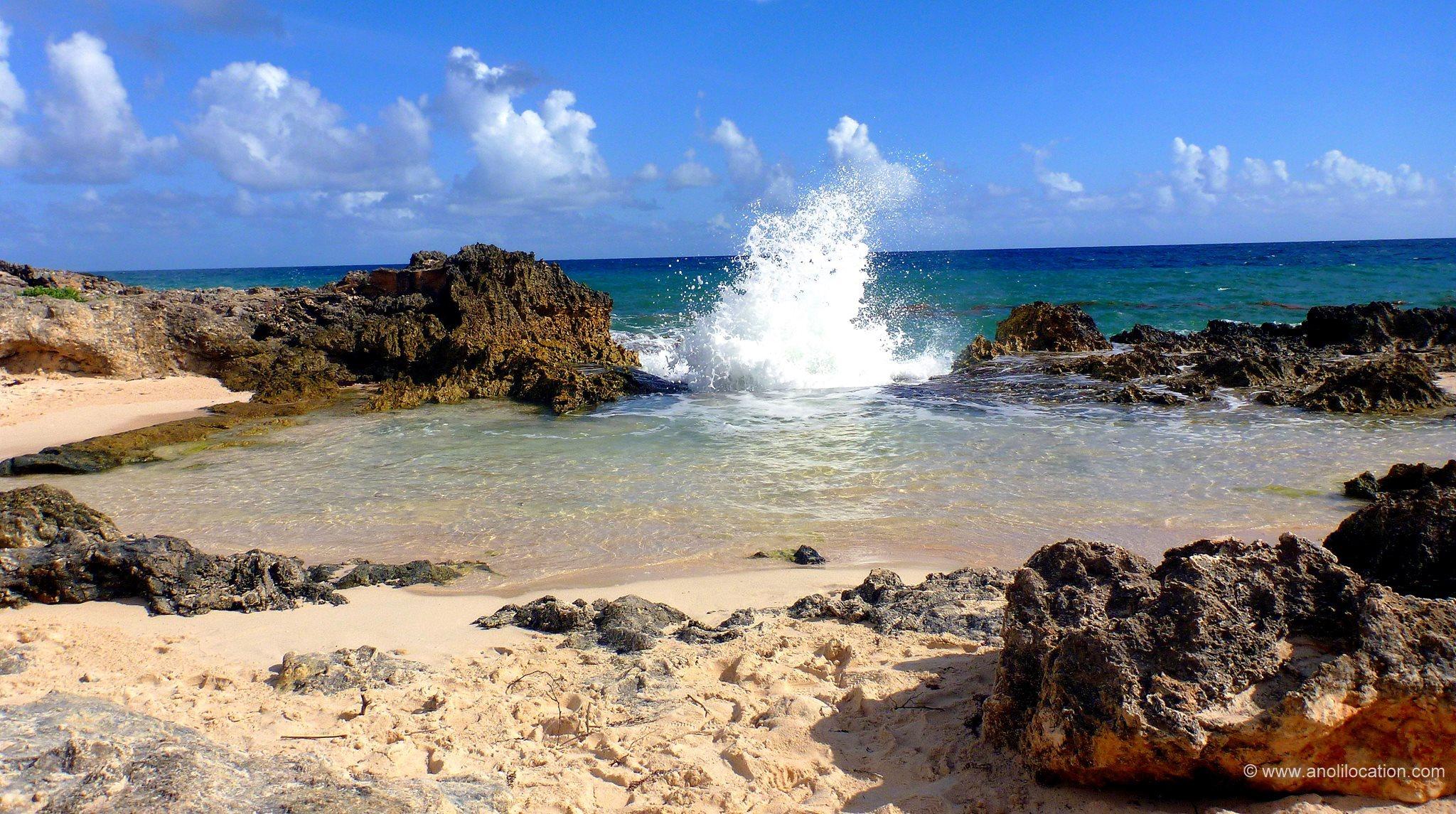 Anoli_Location_La_Douche_Saint_françois_Guadeloupe