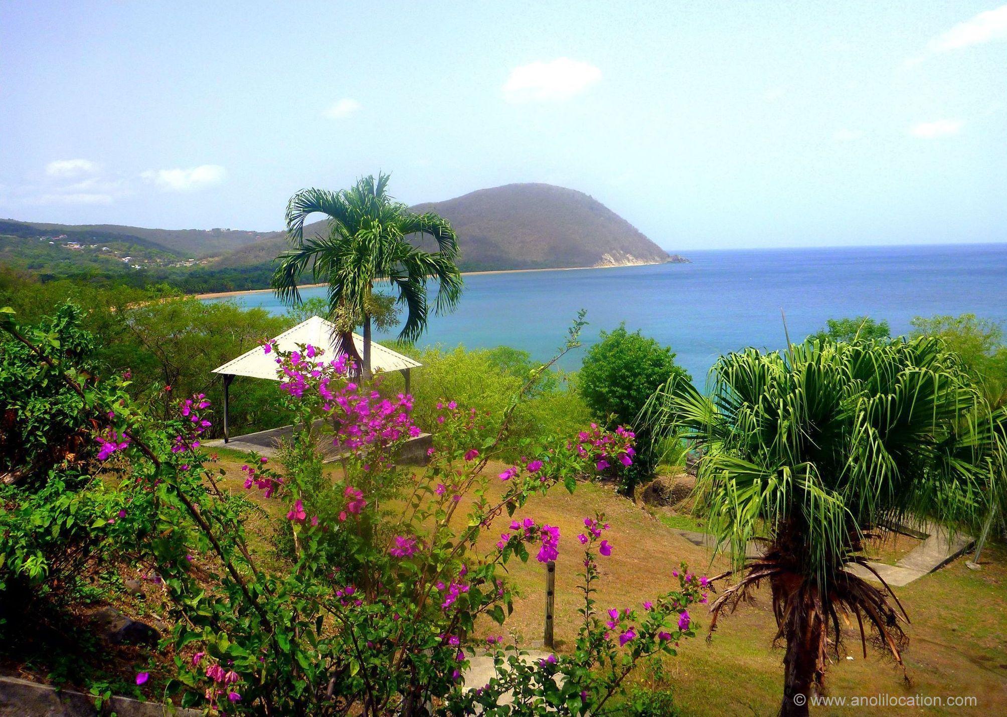 Anoli Location_Deshaies_Guadeloupe