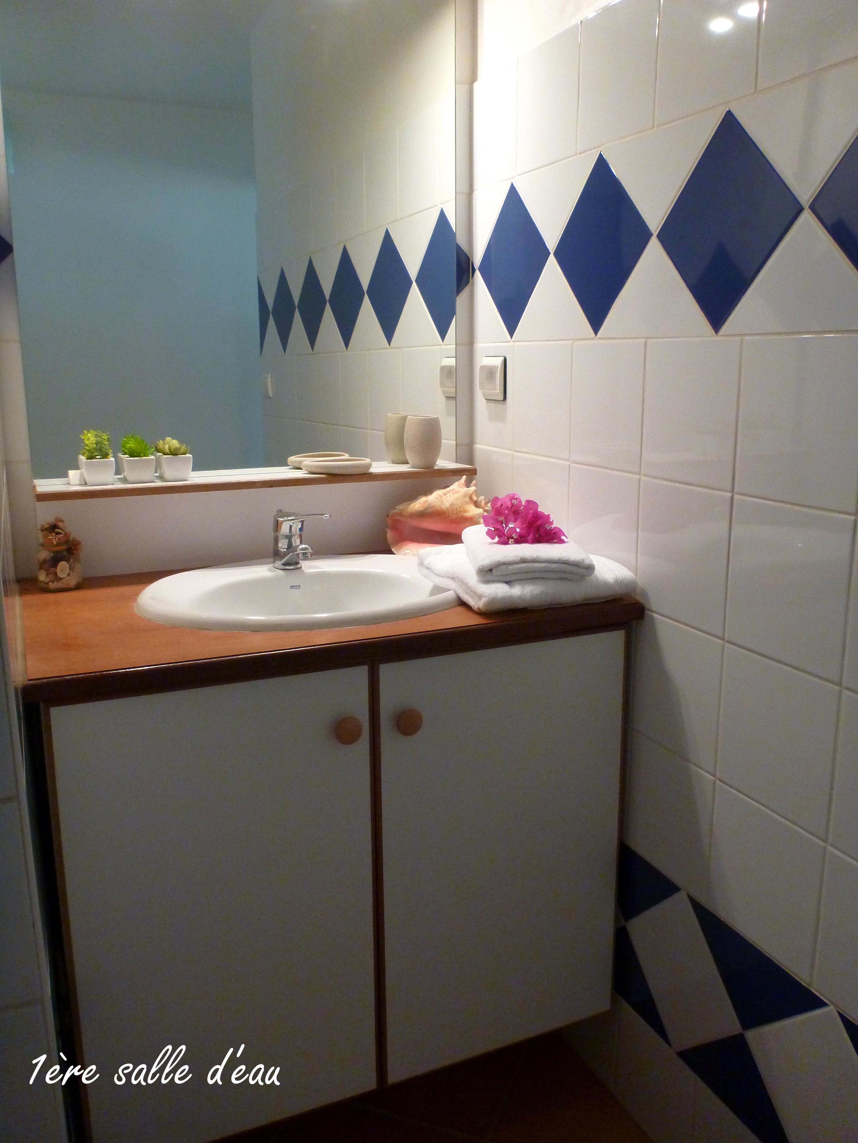 Anoli Location_Salle de bain Bleue