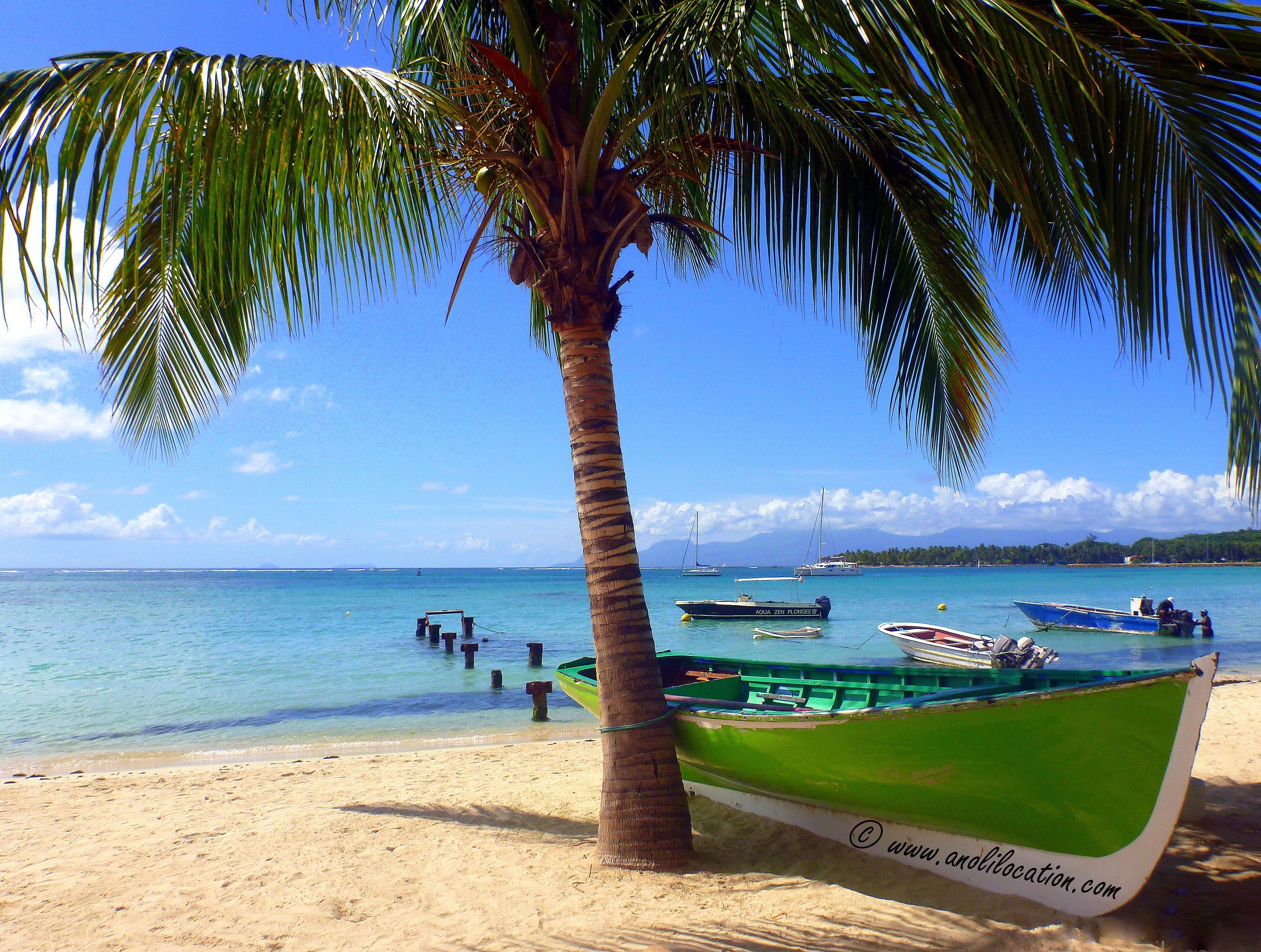 Anoli Location_Plage  Sainte-Anne Guadeloupe